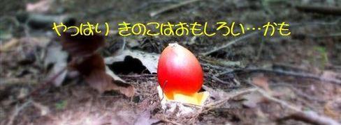 無題_R_2